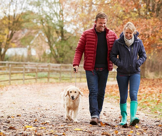Middle Aged Couple Walking Dog Autumn