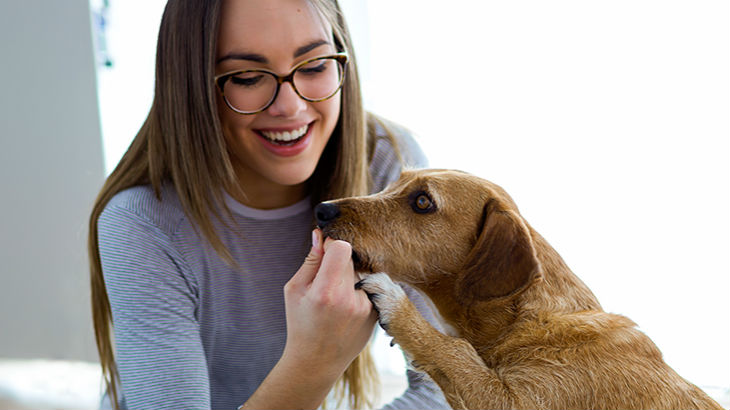 insurance - pet - resources - images - 730x410 - IMG RESP - woman with dog 730x410