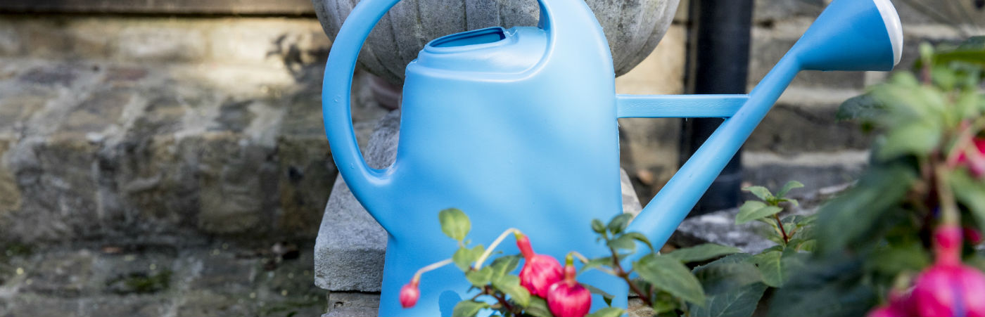 A blue watering can in the garden amid pink flowers